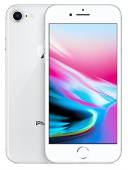 Apple iPhone 8 64GB Silver  - фото 6513