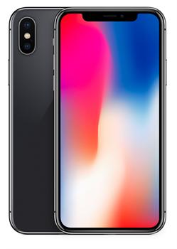 Apple iPhone X 256GB Space Gray - фото 6733