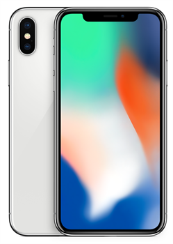Apple iPhone X 256GB Silver  - фото 6739