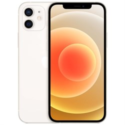 Смартфон Apple iPhone 12 256GB (RU)