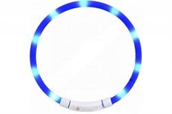 Светящийся ошейник Little Beast Glowing Collar LED (XL81-5001)