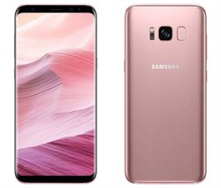 Samsung Galaxy S8 64Gb Rose Gold DUOS (SM-G950FD)