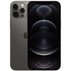 Смартфон Apple iPhone 12 Pro Max 256Gb (RU)